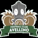 Fc Avellino scudetto Campania Football