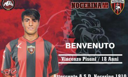 Un baby talento per la Nocerina: dallo Spezia arriva Pisani